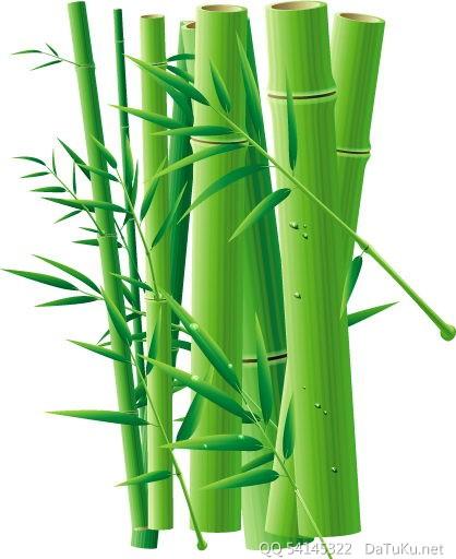 矢量竹子竹林 :装饰画素材网