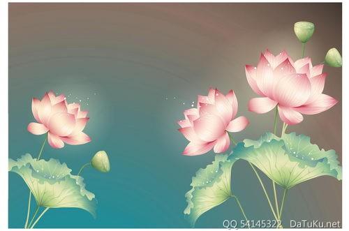 鲜艳的荷花莲藕
