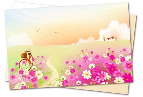 开满鲜花的小路
